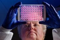 Científica examinando una placa microtituladora
