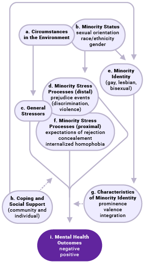 "A flow chart shows minority stress processes in lesbian, gay, and bisexual populations. Box A titled ""Circumstances in the Environment"" has an arrow leading into Box C titled ""General Stressors."" Box B titled ""Minority Status"" has arrows leading into Box D titled ""Minority Stress Processes (distal)"" and Box E titled ""Minority Identity."" Box E has arrows leading into Box F titled ""Minority Stress Processes (proximal)"" and Box G titled ""Characteristics of Minority Identity."" Boxes C, D, and F all lead to Box I titled ""Mental Health Outcomes,"" which is influenced by Box H titled ""Coping and Social Support."""