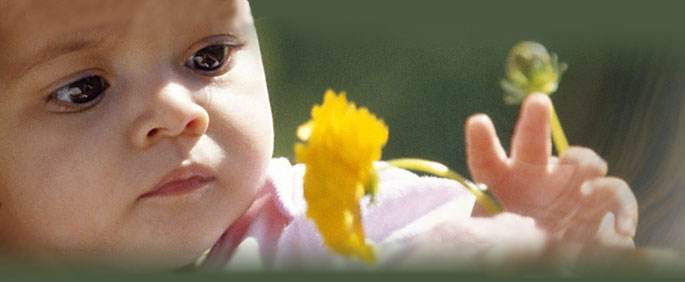 Infant touching a flower.