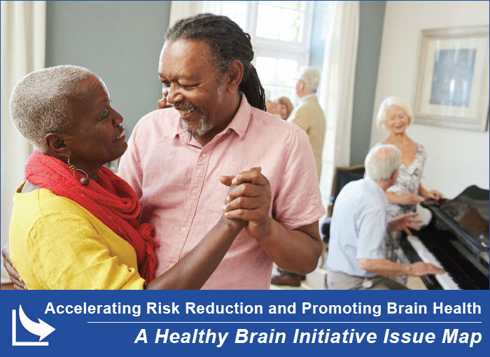 Accelerating Risk Reduction and Promoting Brain Health: A Healthy Brain Initiative Issue Map