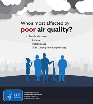 Who's most affected by poor air quality - infographic