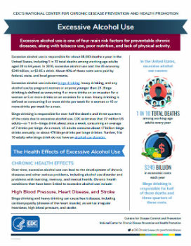 Excessive Alcohol Use Fact Sheet PDF preview