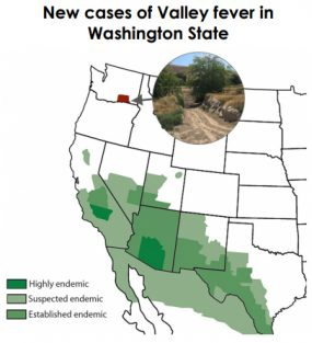 A map of the endemic areas where Coccidioides fungus is found, primarily in the southwestern US. A small rectangular section colored in red in Washington State shows where they have found new cases.
