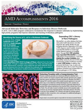 thumbnail version of AMD Accomplishments 2016 - back page