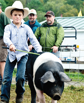Young boy in a cowboy hat holding a guiding stick runs alongside a large black and white hog