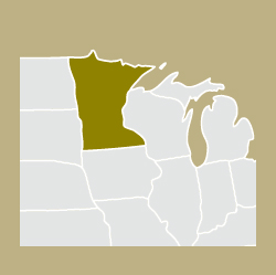 illustration showing Minnesota and surrounding states