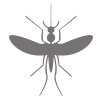 icon of mosquito