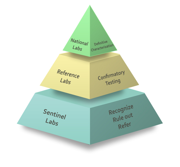 Pyramid representing the Laboratory Response Network - National Labs (top), Reference Labs (middle) and Sentinel Labs (bottom).
