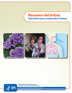 Thumbnail image of cover for 'Guide to Understanding Anthrax' in Spanish: Guía básica para comprender el ántrax