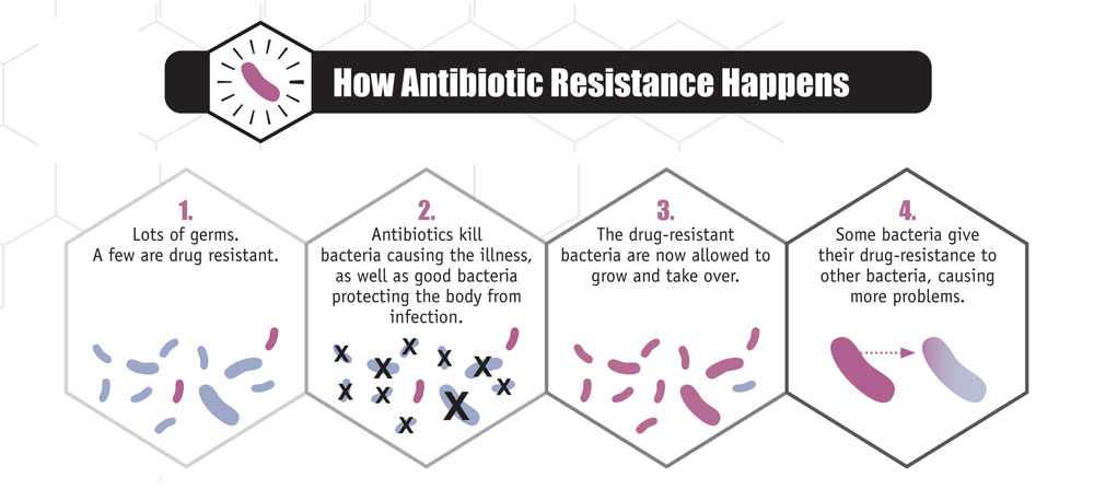 antibiotic resistance questions and answers community   gov antibiotic use community images how ar happens jpg