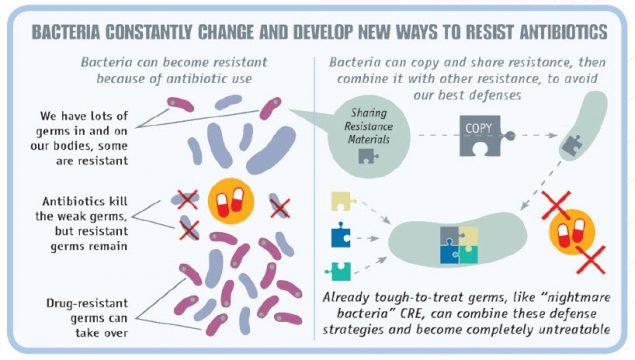 how to stop antibiotic resistance