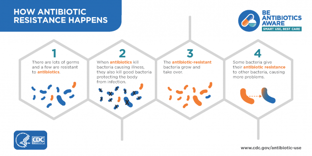 what happens when you use antibiotics