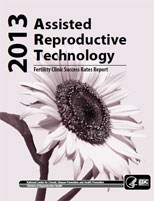 2013 Fertility Clinic Report cover