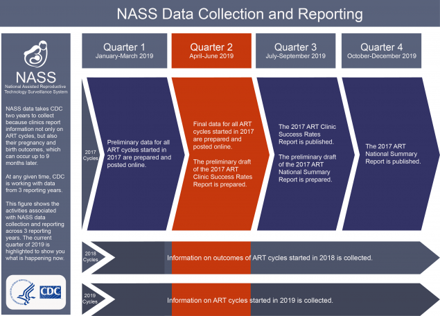 NASS Data Collection and Reporting Description NASS data takes CDC two years to collect because clinics report information on not only ART cycles, but also their pregnancy and birth outcomes, which can occur up to 9 months later. At any given time, CDC is working with data from 3 reporting years. This figure shows the activities associated with NASS data collection for 3 years. The current quarter is highlighted to show you what is happening now. Quarter 1 (January-March 2018): Preliminary data for all ART cycles started in 2016 are prepared and posted online. Quarter 2 (April-June 2018): Final data for all ART cycles started in 2016 are prepared and posted online. The preliminary draft of the 2016 ART Clinic Success Rates Report is prepared. Quarter 3 (July-September 2018): The 2016 ART Clinic Success Rates Report is published. The preliminary draft of the 2016 ART National Summary report is prepared. Quarter 4 (October-December 2018): The 2013 ART National Summary Report is published. 2017 Cycles – Information on outcomes of ART cycles started in 2017 is collected. 2018 Cycles – Information on ART cycles started in 2018 is collected.