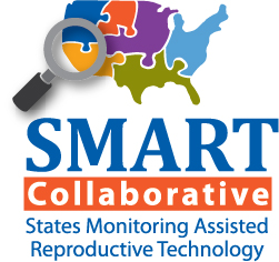 technology assisted reproduction essay Essay regulating reproductive technologies: timing, uncertainty, and donor anonymity guide us efforts to address assisted reproductive technology) 1192 boston university law review [vol 90:1189 regime for art by developing two dimensions of law and technology.