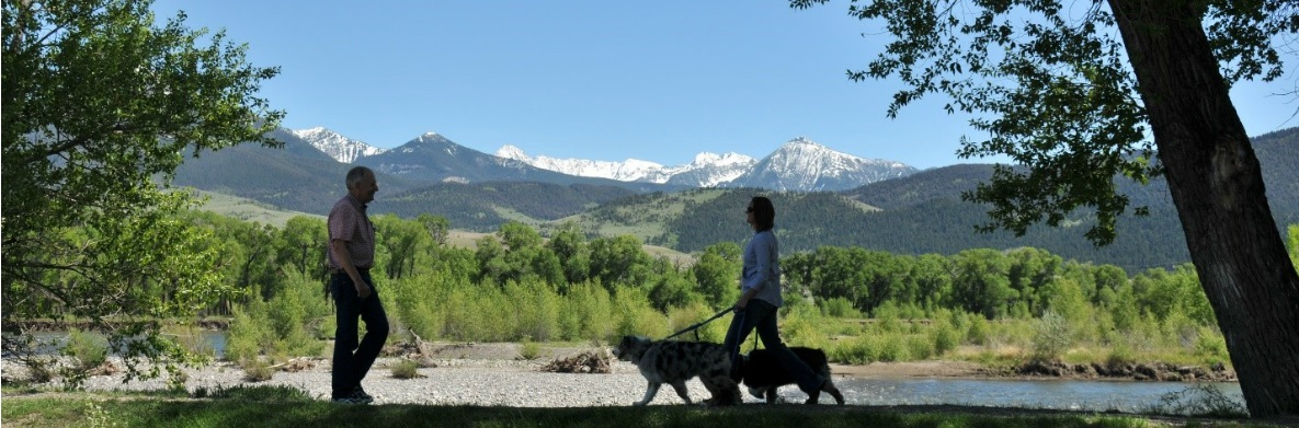 Woman walking her dogs in front of the Montana mountains.
