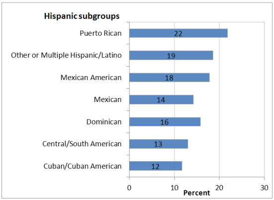 Graphic chart: Hispanic subgroups- Puerto Rican=22, Other or Multiple Hispanic/Latin=19, Mexican American=18, Mexican=14, Dominican=16, Central/South American=13, Cuban/Cuban American=12