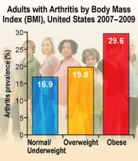 Graph showing the percent of arthritis prevalence of adults in the U.S. 2007-2009 that are normal/ underweight, overweight and obese. 16.9 % of people with arthritis are normal/underweight, 19.8 % of people with arthritis are overweight, and 29.6 % of people with arthritis are obese.