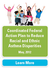 Coordinated Federal Action Plan - report cover thumbnail