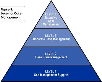 Fig 2: Levels of Case Management