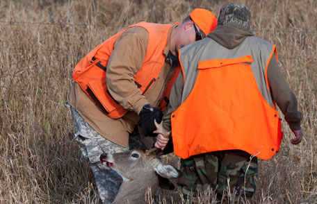 Two hunters in the field with a deer