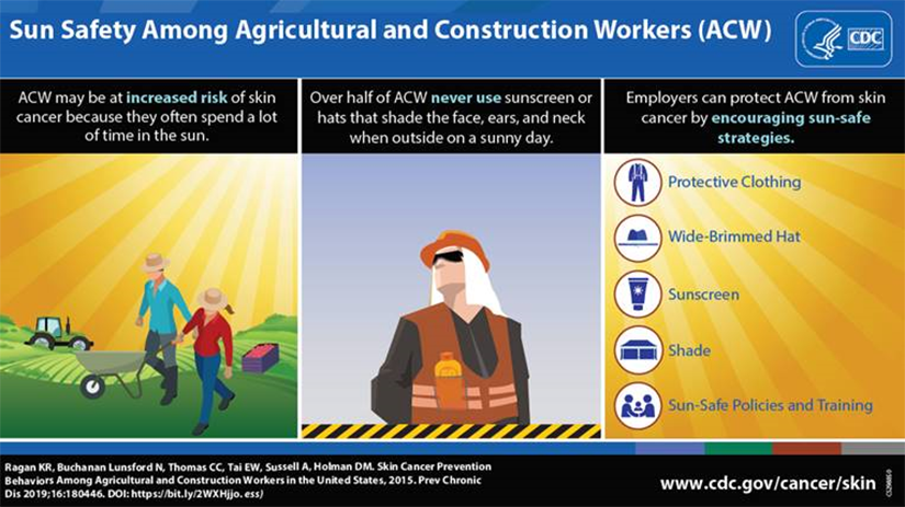 Sun Safety Among Agricultural and Construction Workers (ACW). ACW may be at increased risk of skin cancer because they often spend a lot of time in the sun. Over half of ACW never use sunscreen or hats that shade the face, ears, and neck when outside on a sunny day. Employers can protect ACW from skin cancer by encouraging sun-safe strategies: protective clothing, wide-brimmed hat, sunscreen, shade, sun-safe policies and training. Ragan KR, Buchanan Lunsford N, Thomas CC, Tai EW, Sussell A, Holman DM. Skin Cancer Prevention Behaviors Among Agricultural and Construction Workers in the United States, 2015. Preventing Chronic Diseases 2019;16:180446. DOI: https://bit.ly/2WXHjjo.ess). www.cdc.gov/cancer/skin.