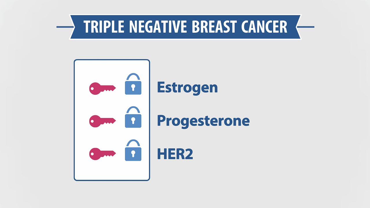 Triple Negative Breast Cancer: Estrogen, Progresterone, HER2