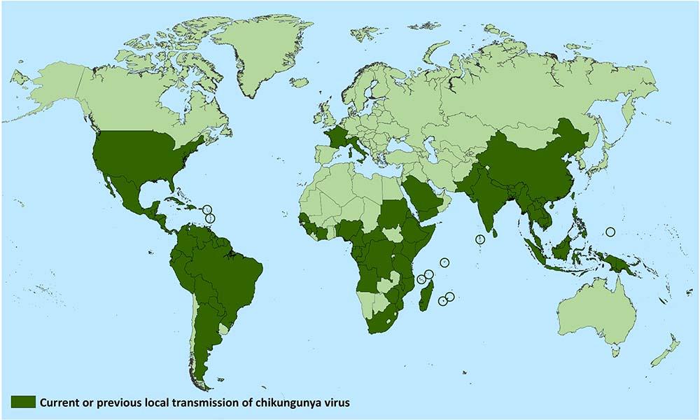 Geographic Distribution | Chikungunya virus | CDC