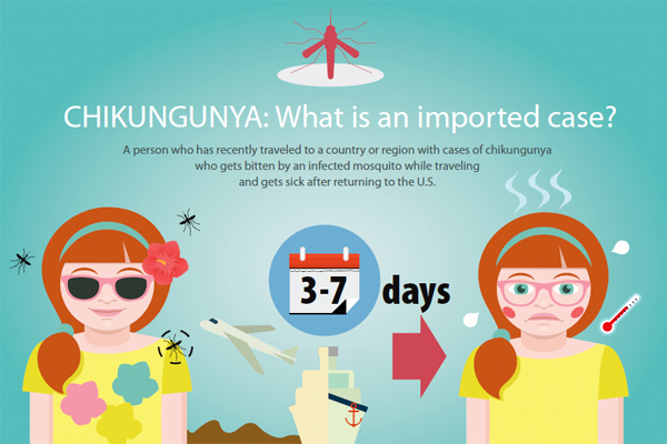 Chikungunya infographic: CHIKUNGUNYA: What is an imported case?