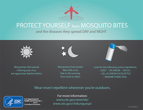 Poster: Protect yourself form mosquito bites