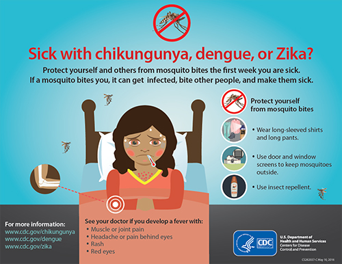 Sick with chikungunya, dengue, or Zika poster thumbnail