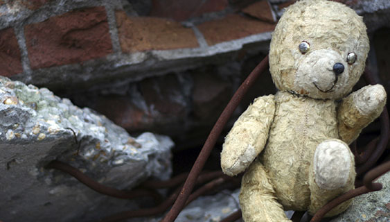 Teddy bear outside after disaster
