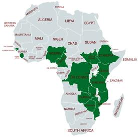 Cholera in Africa   Cholera   CDC