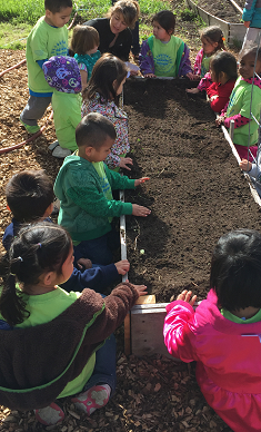 children by raised bed for planting
