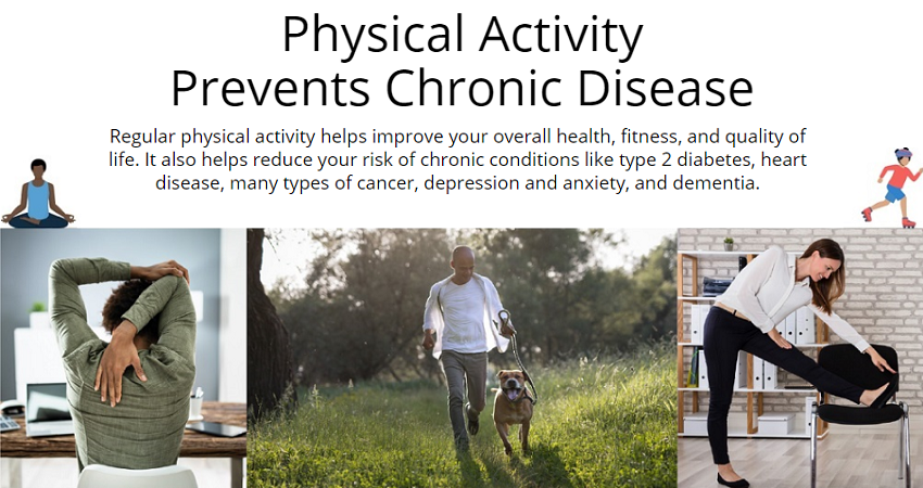 Physical Activity Prevents Chronic Disease infographic