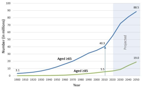 This chart shows the number of people in the United States aged 65 and older and aged 85 and older from 1900 to 2010, and the projected numbers for 2020 to 2050. The population aged 65 and older grew from 3.1 million in 1900 to 40.3 million in 2010. By 2050, this population is expected to rise to 88.5 million. The population aged 85 and older grew from 100,000 in 1900 to 5.5 million in 2010. By 2050, this population is expected to grow to 19 million.