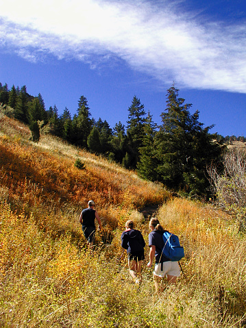 Group of hikers in a trail in autumn