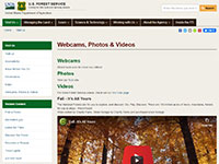 US Forest Service National Forests