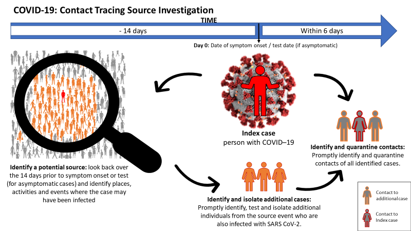 Figure summarizing COVID-19: Contact Tracing Source Investigation