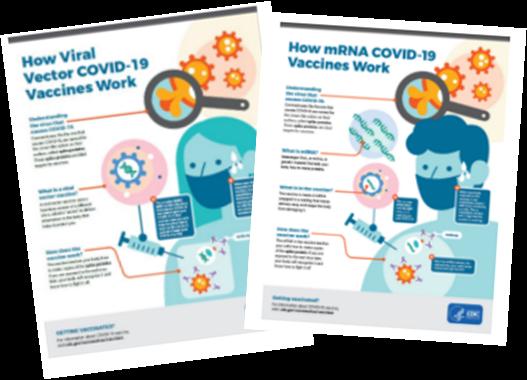 hoja informativa acerca de las vacunas contra elCOVID-19