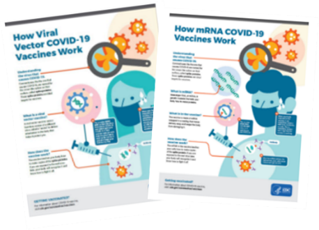 Thumbnail image of the Facts About COVID-19 Vaccines PDF