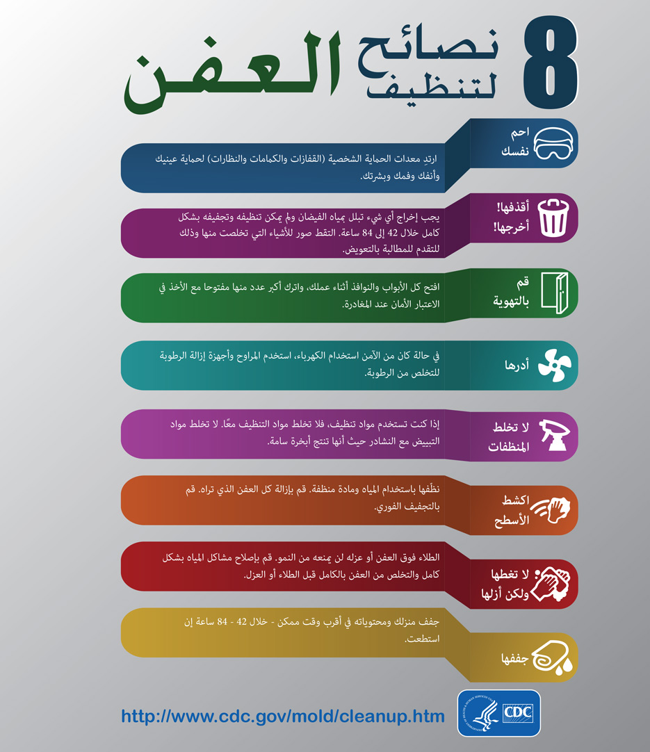 Mold Infographic - Arabic