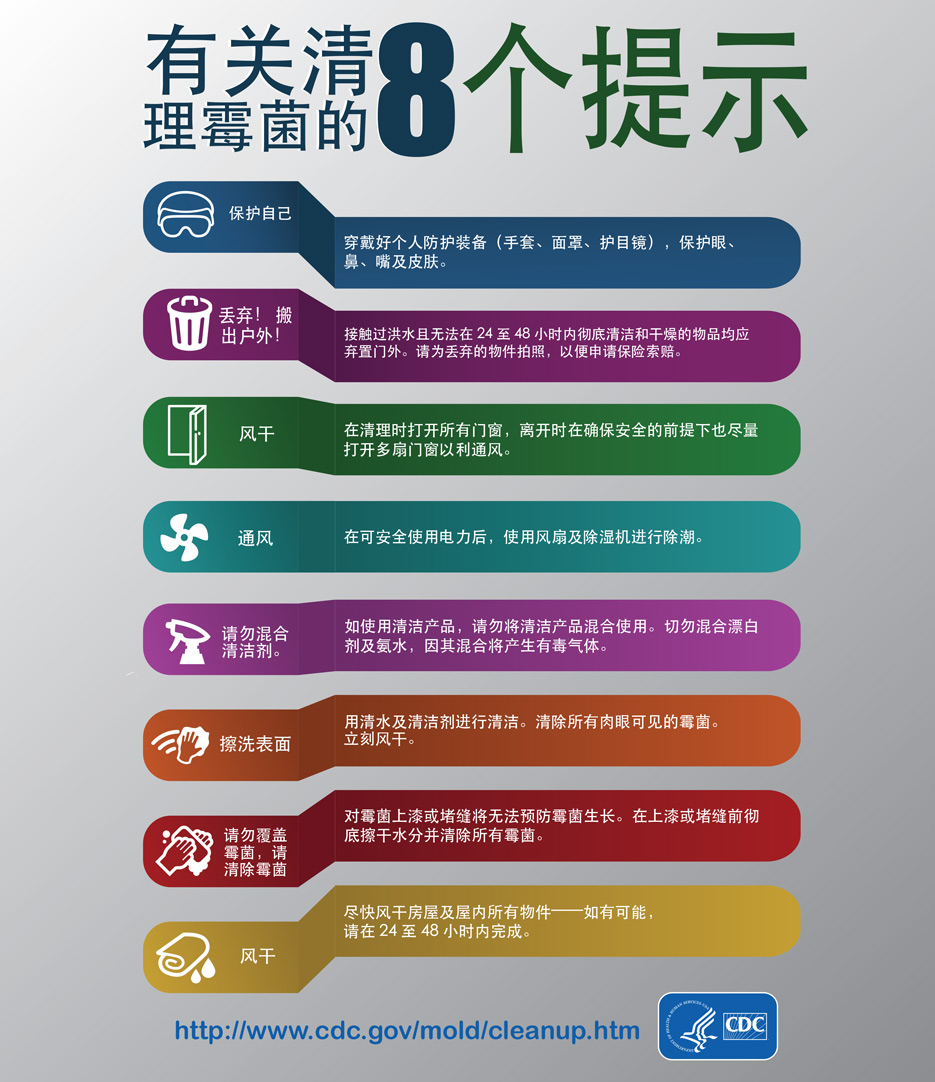 Mold Infographic - Chinese