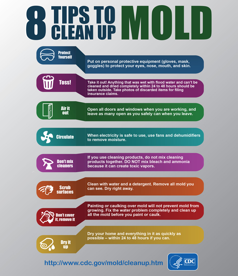 8 tips to cleanup mold infographics phpr cdc. Black Bedroom Furniture Sets. Home Design Ideas