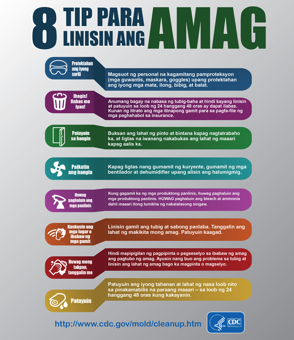Mold Infographic - Tagalog