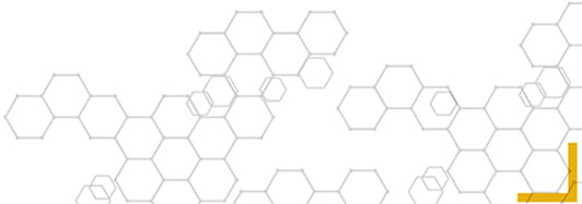 DHIS Strategic Framework | CDC