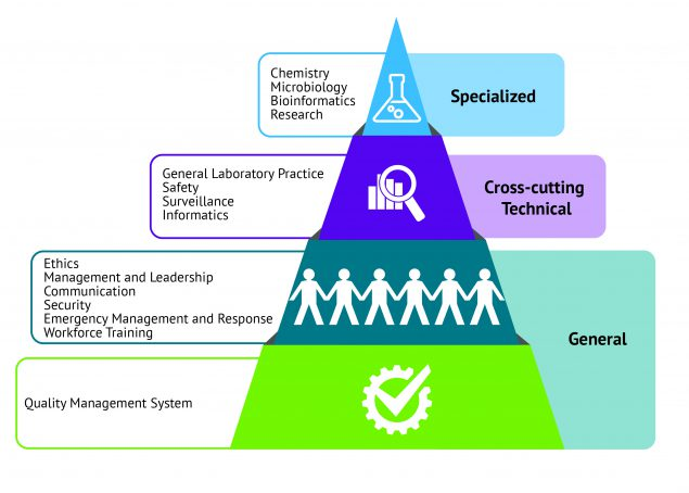 "The image shows a pyramid with four tiers. At the base of the pyramid and encompassing its own tier is the ""General"" domain of Quality Management System. This positioning illustrates that the Quality Management System domain is foundational to all other areas of laboratory practice. The second tier is the remainder of the ""General"" competencies—Ethics, Management and Leadership, Communication, Security, Emergency Management and Response, and Workforce Training. The third tier encompasses the ""Cross-Cutting Technical"" domains of General Laboratory Practice, Safety, Surveillance, and Informatics. The top tier includes the ""Specialized"" domains of Chemistry, Microbiology, Bioinformatics, and Research."