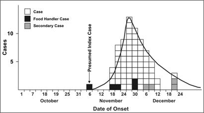 A histogram shows increase and decrease in the number of Hepatitis A cases over time.