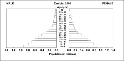A population pyramid shows the percent of population on horizontal bars stacked by age and sex.