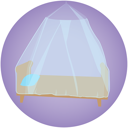 A bed covered with a mosquito net